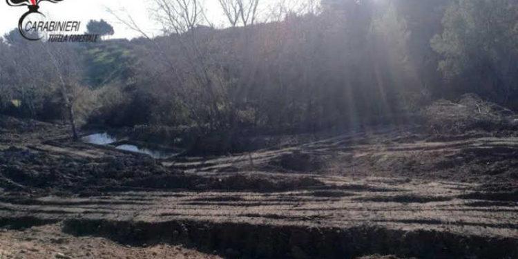 Il terreno dove sono stati effettuati i sopralluoghi dei carabinieri